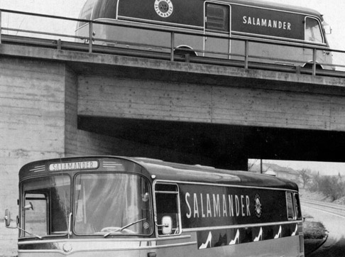 Salamander buss